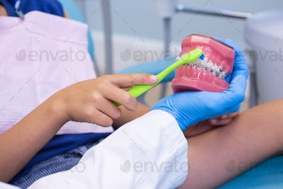 Cropped image of dentist teaching boy brushing teeth on dentures