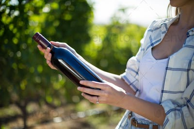 Mid section woman holding wine bottle at vineyard