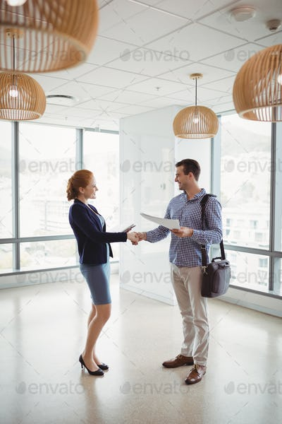 Smiling executives shaking hands