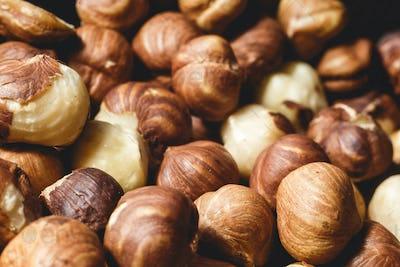 a lot of large large ripe hazelnuts