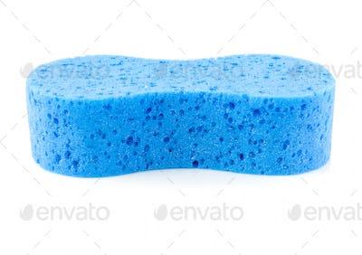 Blue sponge on white