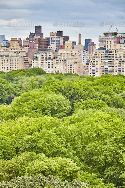 Central Park and Manhattan Upper East Side, New York.