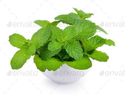 mint leaf in the bowl on white background