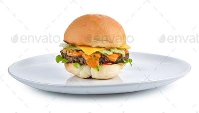 Meat hamburger on white plate