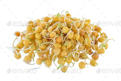 Pea sprouts isolated on white background