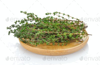 Thyme herb on white background