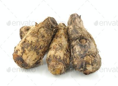 taro roots on white
