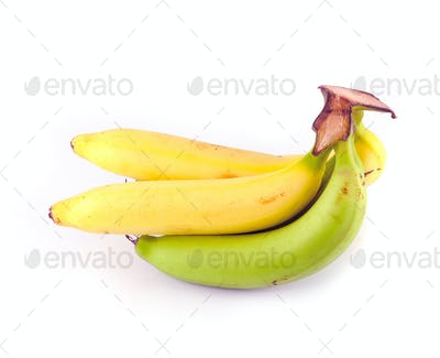 yellow and green bananas isolated on white background
