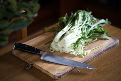 Puntarelle Or Catalonia Chicory
