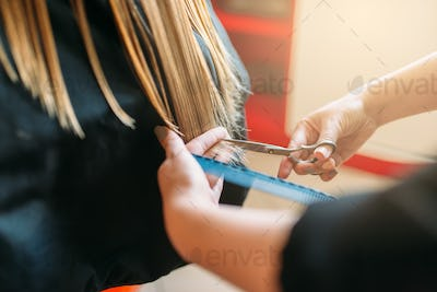 Hairdresser with scissors in hand cuts female hair