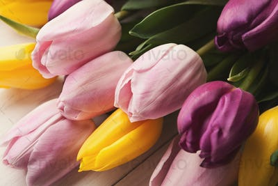 Colorful tulips background, closeup