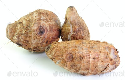 Group of taro roots  on white background