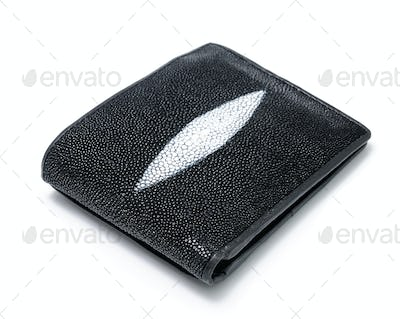 Wallet close up on white background