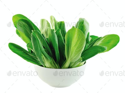 Bok choy in the bowl isolated on white background
