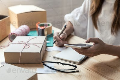 Young entrepreneur woman working at home