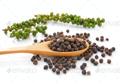 Spoon with Whole Black Pepper Granules and Bunches of fresh gree