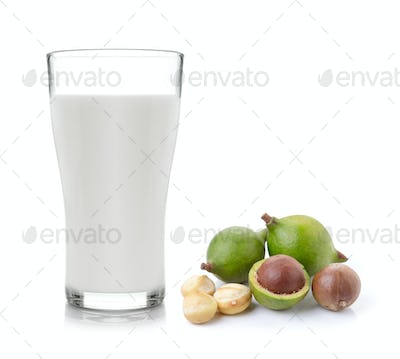 milk and macadamia nuts on white background