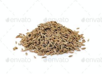 thai herbs spices on a white background