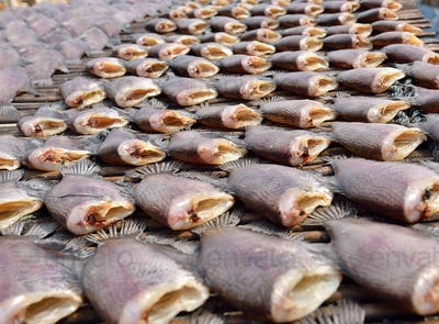 Sun dried salid fish before cooking sell in the market in thaila