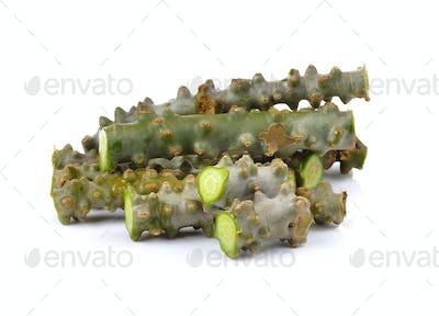Tinospora cordifolia herb on white background