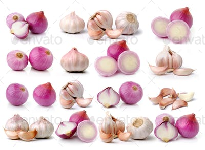 garlic and onion on white background