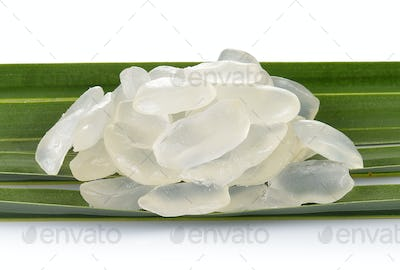 Palm Seed on white background