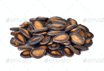dry watermelon seed on white background