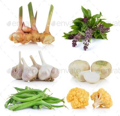 Green beans, Sweet Basil, Mini white turnips, garlic, yellow cau