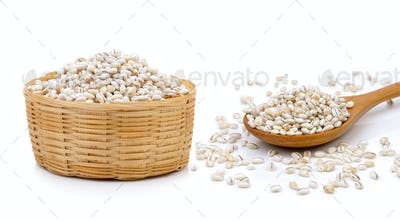 Barley Grains in the basket on white background
