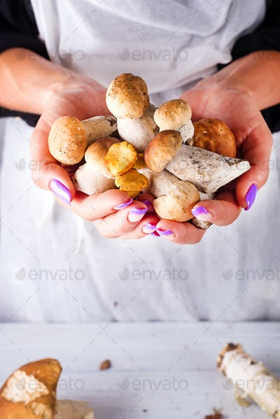 Female hands holding fresh forest mushrooms, against a white wooden table background with copy space