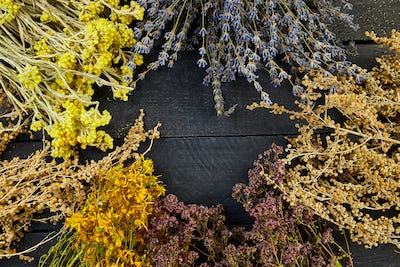 Frame from dry herbs flowers