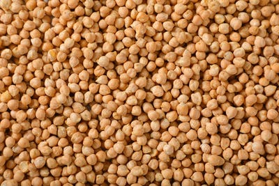 raw dried chickpeas