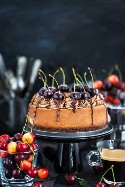 Delicious homemade chocolate cheesecake decorated with fresh che