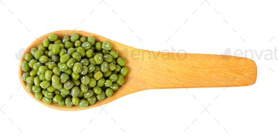 green bean in wood spoon on white background