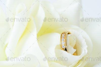 Close up Wedding ring on white_-4