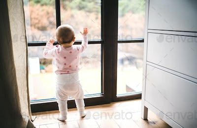 A toddler child standing by the window on the floor at home.