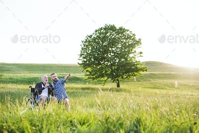 An adult hipster son with senior father in wheelchair on a walk in nature at sunset, laughing.