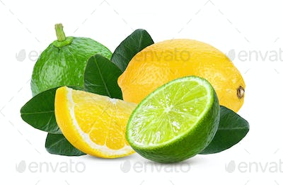 lemon and lime fruit isolated on white background