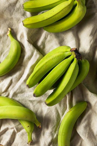 Organic Raw Green Unripe Bananas