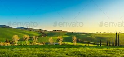 Maremma countryside at sunset. Bibbona, Tuscany, Italy.
