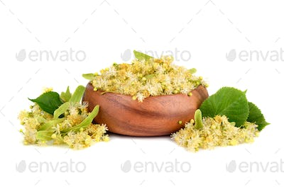 Linden flowers in plate