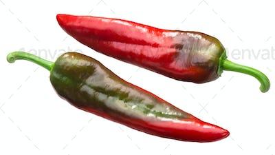 Numex espanola improved chiles, paths
