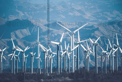 California Wind Power Plant