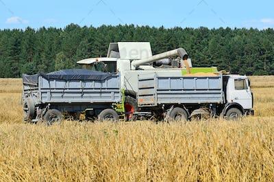 Harvesting in a field