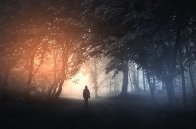 Man in surreal forest with fog and mysterious light on Halloween