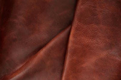 Surface and crease of leather
