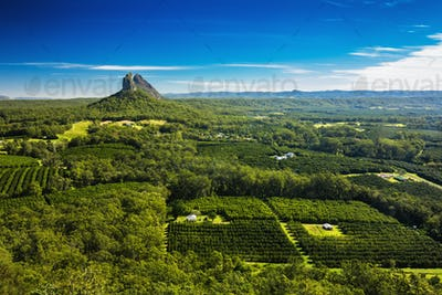 View from the summit of Mount Ngungun, Glass House Mountains, Su