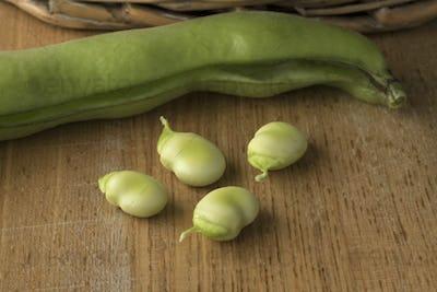 Fresh raw peeled broad beans