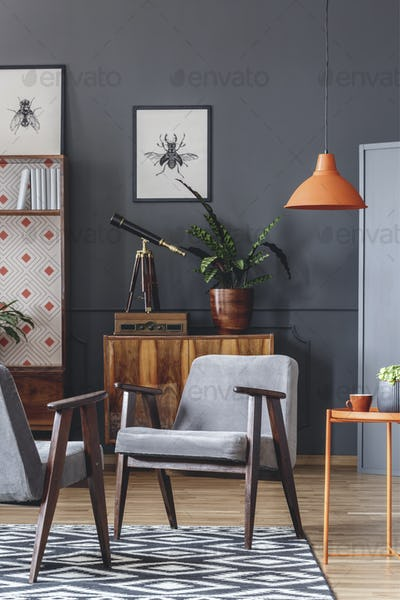 Dark living room interior with armchairs, orange lamp, plant and