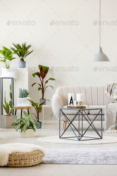 Real photo of a beige living room interior with a sofa standing